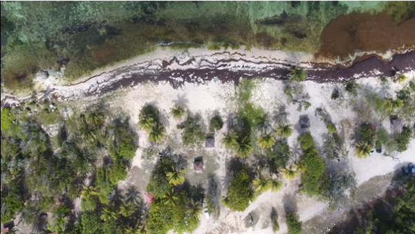 Anse-Maurice :  actions carried out on this pilot site of the Carib-Coast project
